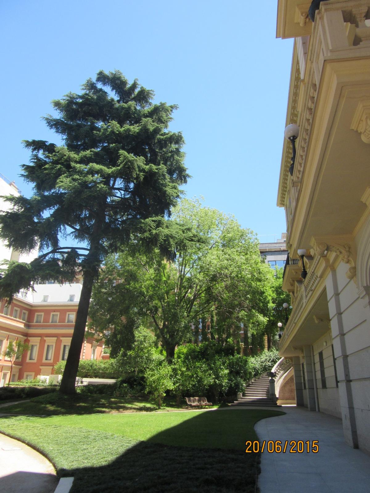 El jardí. Museu Lázaro Galiano