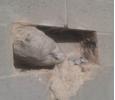 L'home del mur 2