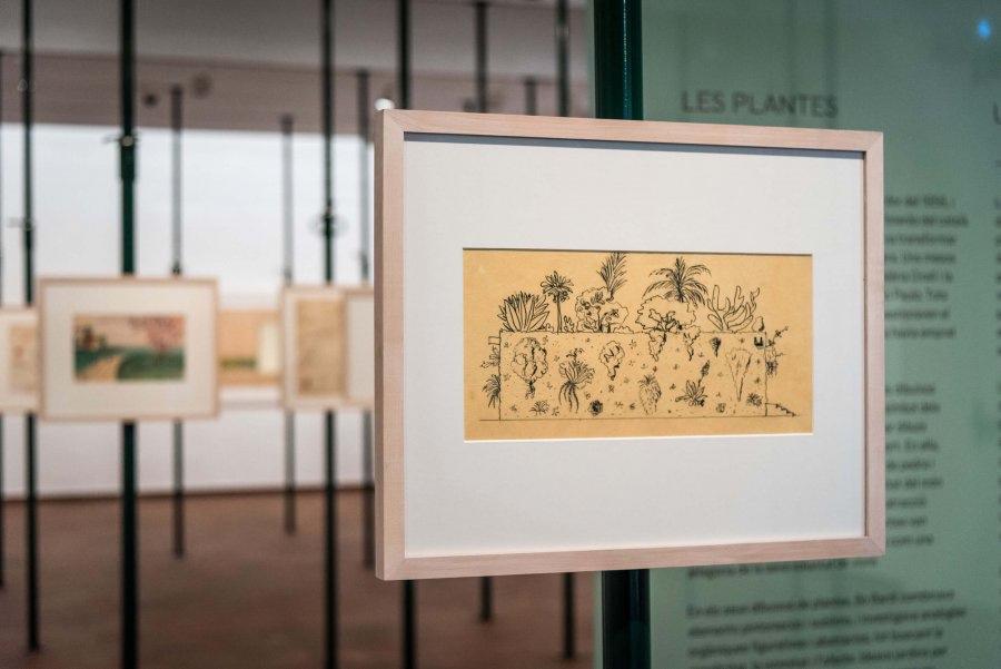 Fundació Joan Miró. Lina Bo Bardi
