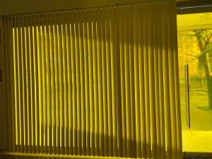 Martí Vitaliti. La idea d'una imatge. Un projecte de Martín Vitaliti en diàleg amb l'obra de Joan Hernández Pijuan. Fundació Suñol